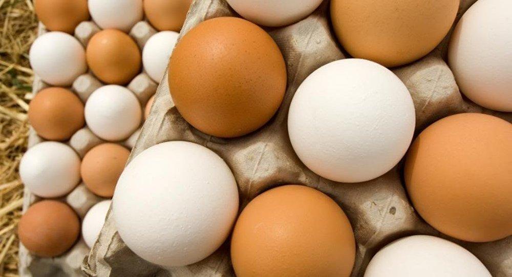 صورة تفسير اكل البيض في المنام , تناول البيض فى الحلم