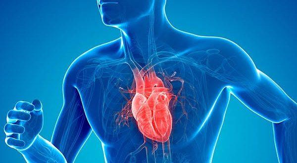 صورة شد عضلة القلب , اسباب حدوث قصور و شد للعضلة القلبية