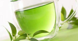 افضل نوع شاي اخضر , انتقى شايك الاخضر بعناية