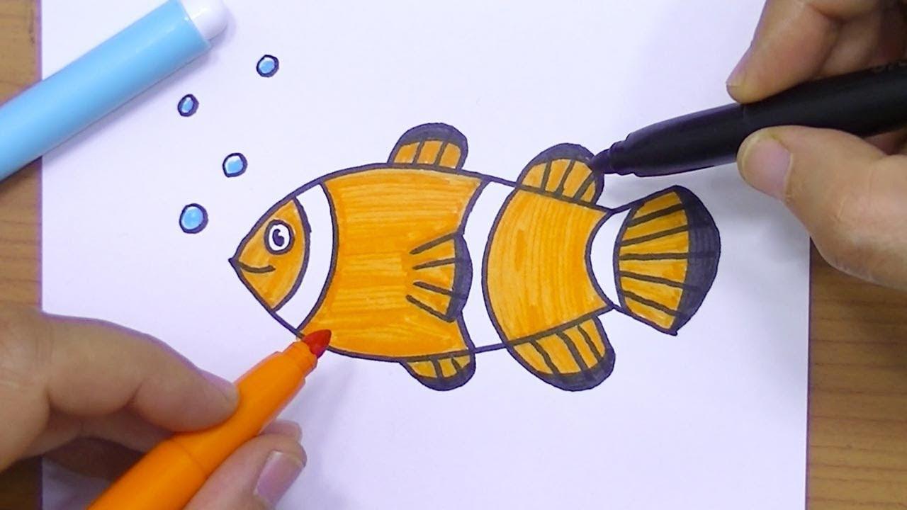 صورة طريقة رسم الاسماك بالصور , كيفية رسم سمكة للمبتدئين 682
