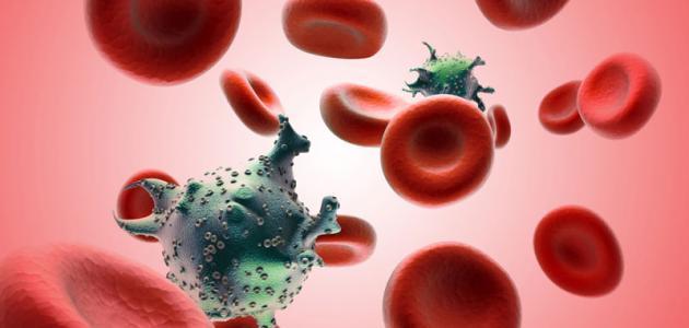 صورة المدة التي يعيشها فيروس سي خارج الجسم , عدوي فيرس سى وعمر بقاءه خارج الدم