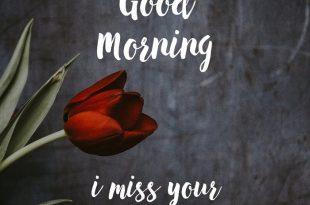 صورة صور صباح الخير للحبيب , في كل صباح احبك