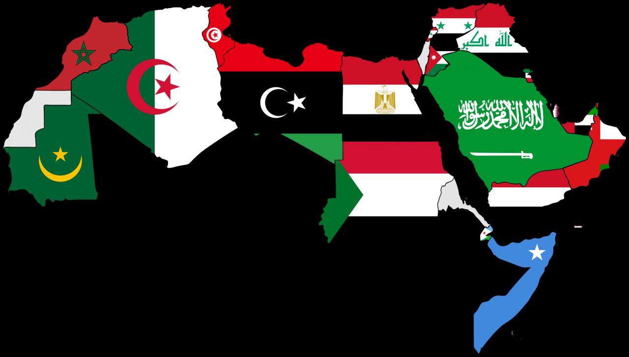 صورة ماهي اكبر دولة عربية مساحة , قائمة ادول التي تعد اكبر في المساحة