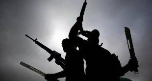 صورة بحث عن الارهاب , مكافحة التطرف العنيف