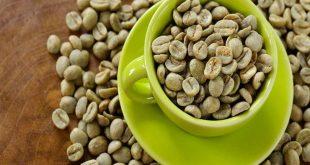 اين تباع حبوب القهوة الخضراء في مصر , القهوة الخضرا و سر شويبس