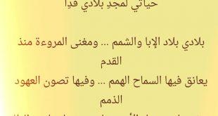 صورة يابلادي واصلي كلمات , اغنية الفنان ابو بكر سالم