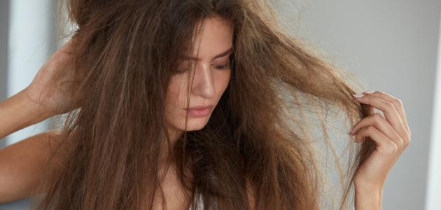 صورة علاج الشعر التالف , كيفيه الحصول علي شعر صحي