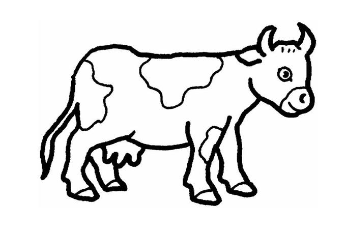 صورة صور رسم حيوانات , صور لتعليم الاطفال الرسم و التلوين