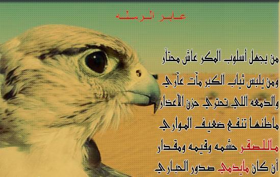 ابيات شعر مدح وفخر قصيره
