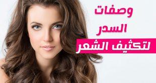 طريقة السدر لتطويل الشعر , فوائد نبات السدر للشعر