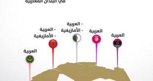 صورة لغة رسمية في المغرب بعد العربية من 8 حروف , المغرب وتعدد اللغات