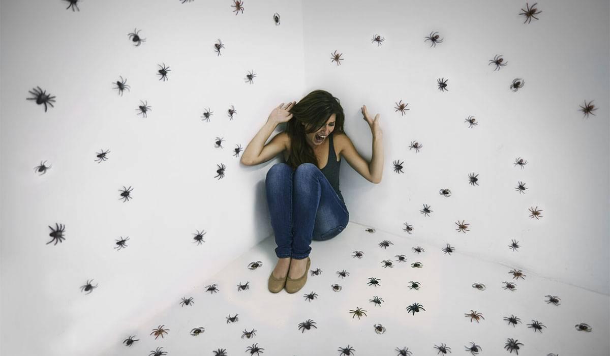 صورة ما معنى كلمة فوبيا , اعراض الفوبيا الاجتماعية