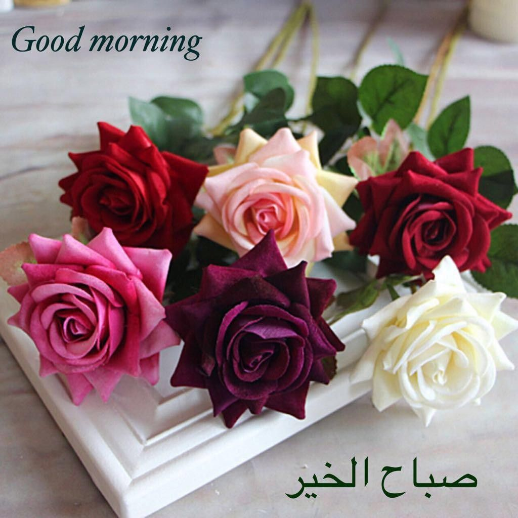 صورة صور تعبر عن صباح الخير , اجمل الصباح مكتوب عليها