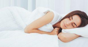 صورة ما هو النوم , مفهوم النوم للكائنات الحيه