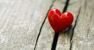 ما هو مفهوم الحب , الحب اجمل من مجرد مفهوم