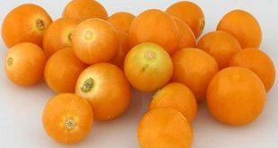 صورة فاكهه بحرف ح , تعرف على فاكهة مهملة ذات قيمة غذائية عالية