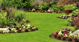 ديكورات حدائق منزلية, حديقة منزلية بتنسيقات رائعة