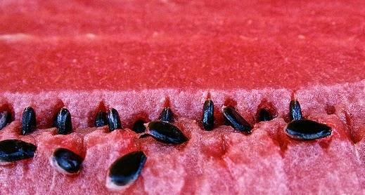 صورة فوائد لب البطيخ, رائع فاكهة و بذور