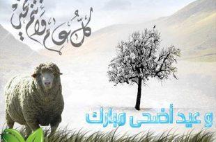 صورة ثانى الاعياد المباركة , موضوع تعبير عن عيد الاضحى