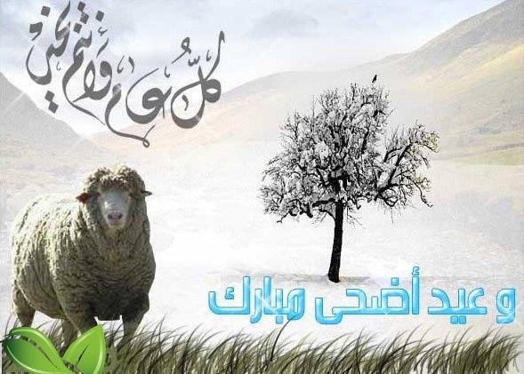 صورة ثانى الاعياد المباركة , موضوع تعبير عن عيد الاضحى 6322