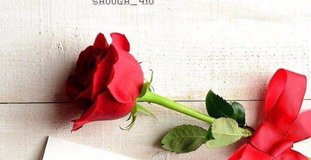 صورة كلام رومانسي في الصباح , صبح على اجمل حبيب برسالة حب