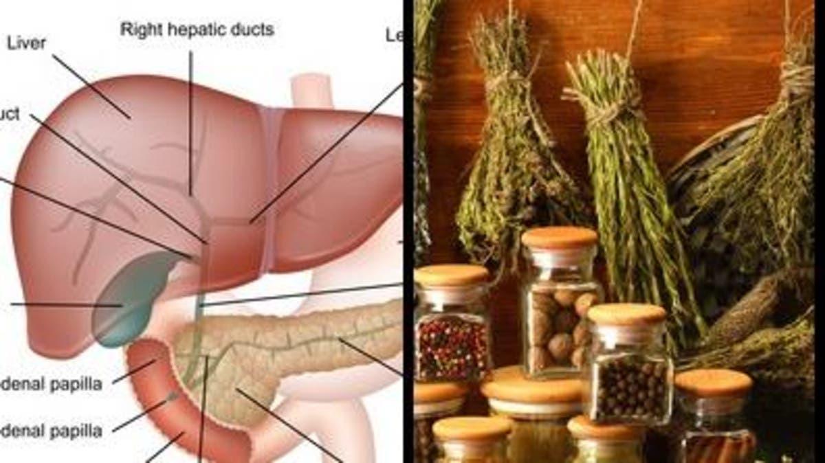 صورة اعشاب مفيده للكبد , تعرف على فوائد الكركم للكبد 3500